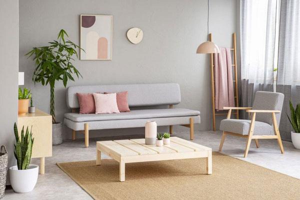 Phòng khách nhà ống và những thiết kế CỰC ẤN TƯỢNG 9