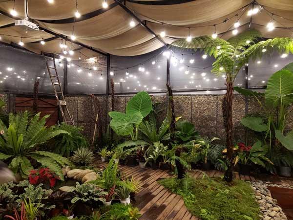 Thiết kế sân vườn đẹp đơn giản và những điều cần biết 2